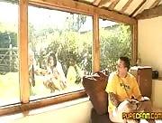 Wanking Through The Window