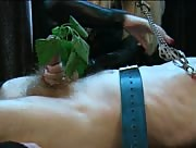 tied down sub gets handjob with plenty of other toys